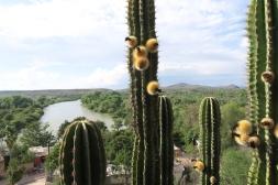 view from my room in El Fuerte