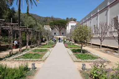 Getty Villa herb garden
