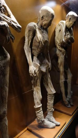 Mummy museum Guanajuato